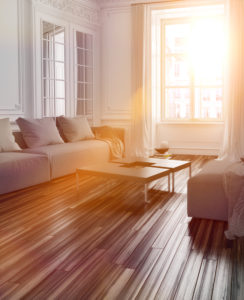 Sunlight streaming into living room through large window