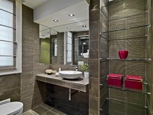 Springfield Glass Company Bathroom Shelves